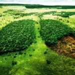 10 cosas que puedes hacer para llevarte bien con el Medio Ambiente