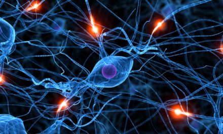 Ocho Señales de Alarma  ¿Debo consultar al neurólogo?