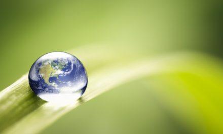 Diez cosas que puedes hacer para  Llevarte bien con el Medio Ambiente