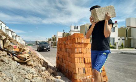 Trabajo Infantil, riesgo para el desarrollo de los menores: STPS Hidalgo.